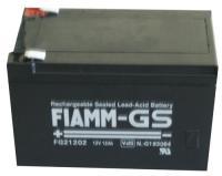 12v-12000mah Blyakkumulator Fiamm-vds